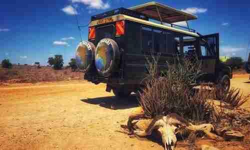 Safari in Kenya Tsavo Est