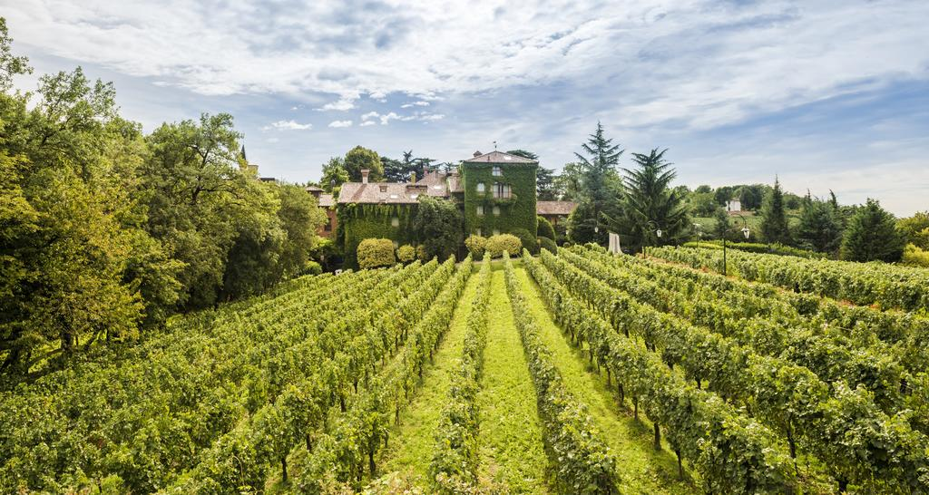 Albereta Wine Resort SPA