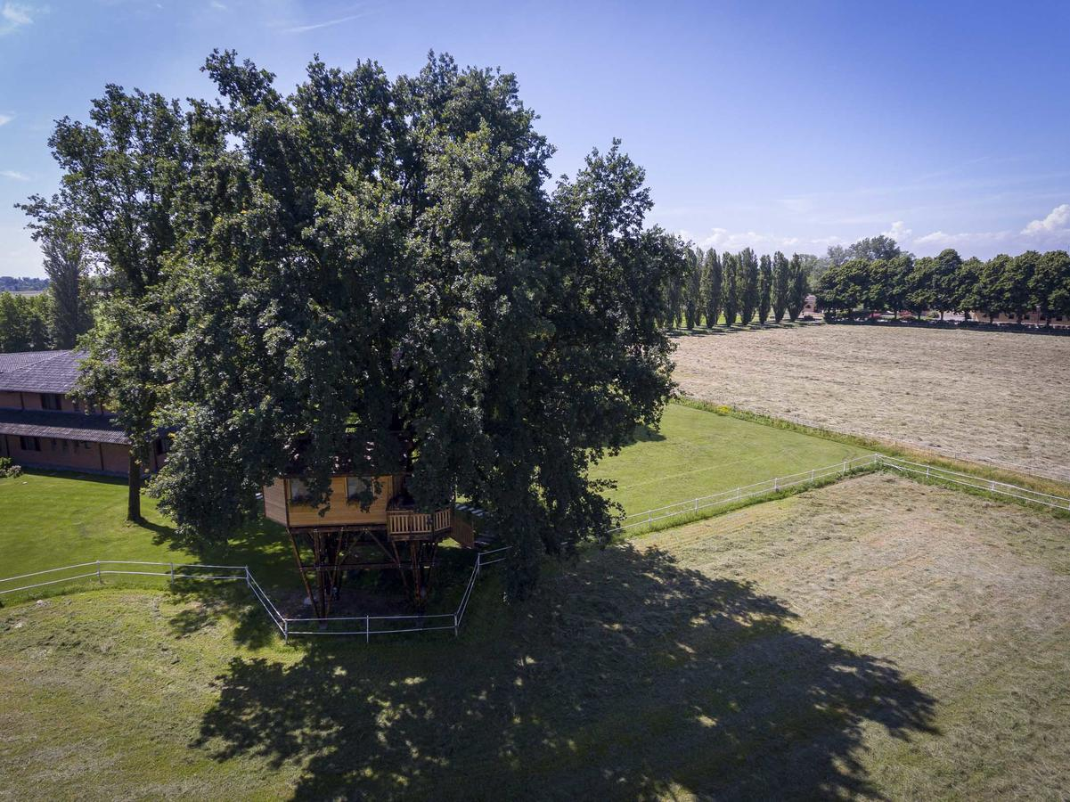 Casa sugli alberi Lombardia