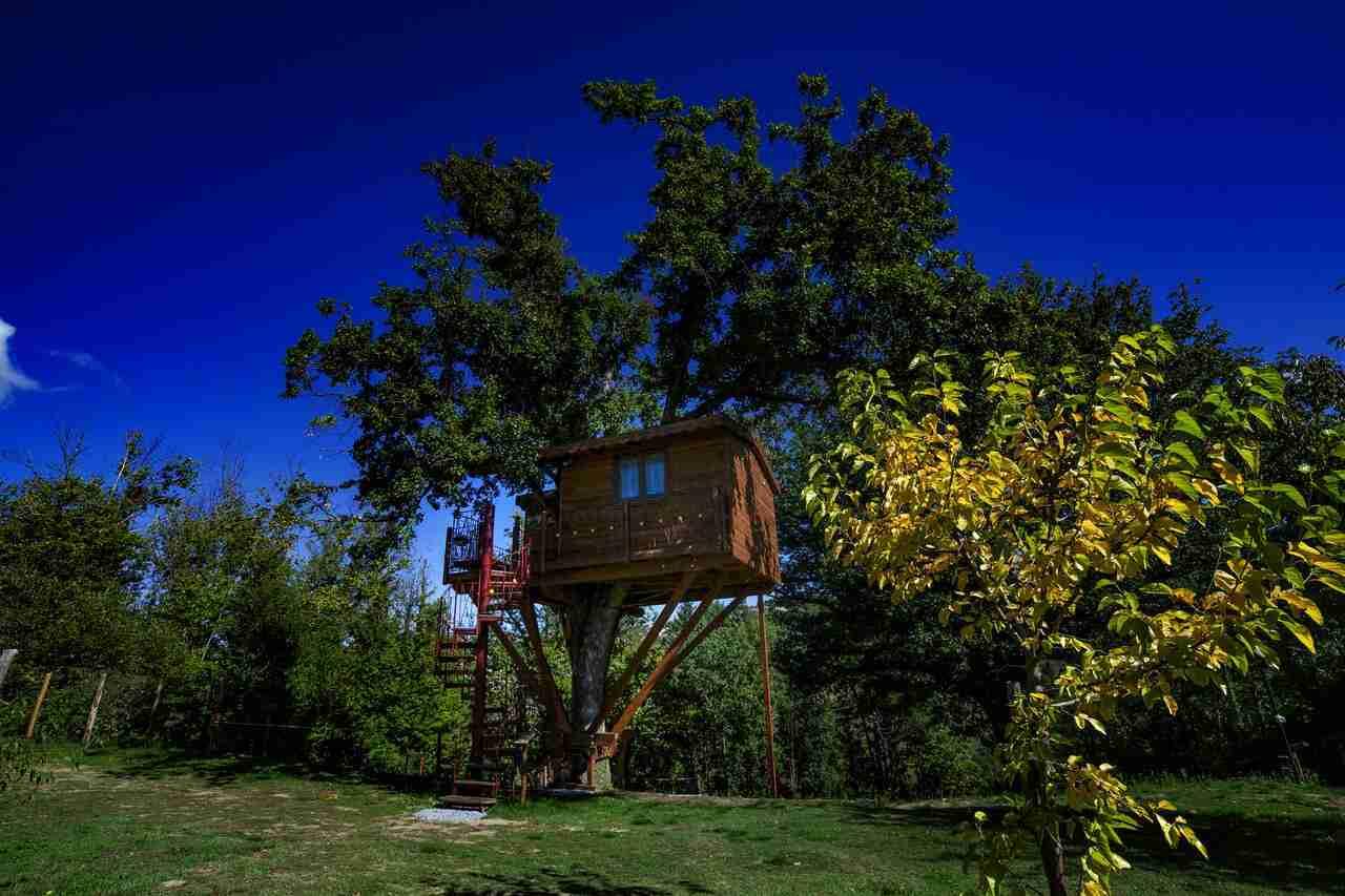 Case sugli alberi Calabria