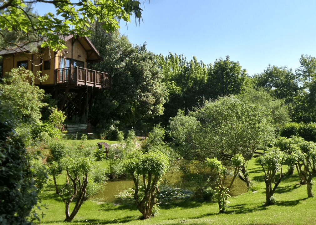 Casa sugli alberi Umbria